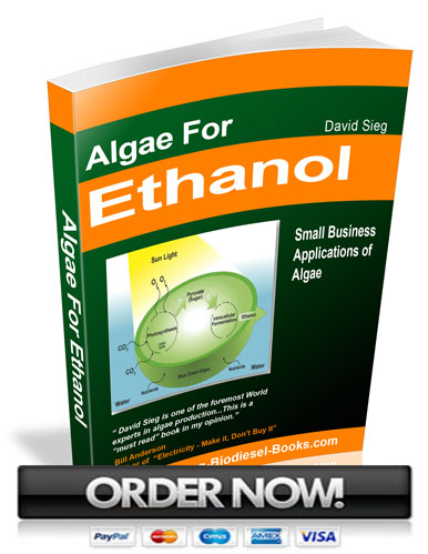 algae for ethanol