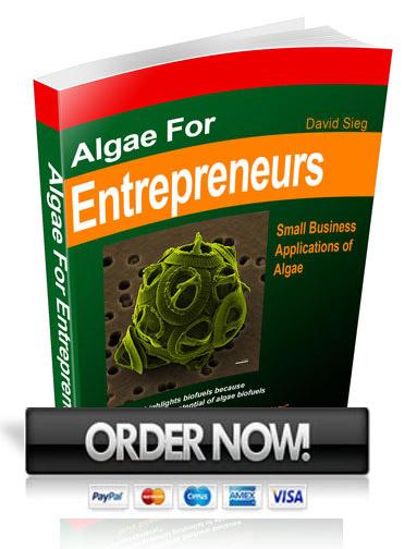 Algae for Entreprenuers
