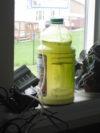 homemade algae bioreactor