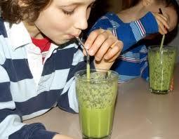 algae nutrition