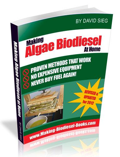 algae biodiesel pdf