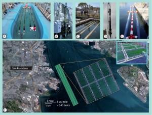sea based algae bioreactors