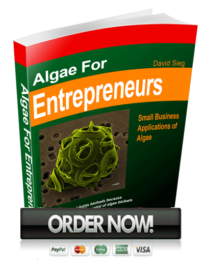 algae for entrepreneurs