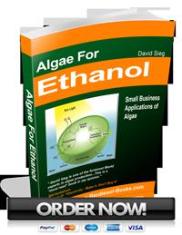 algae ethanol