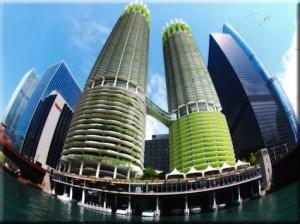algae architecture