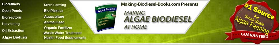 http://making-biodiesel-books.com