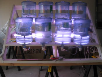 algae bioreactor