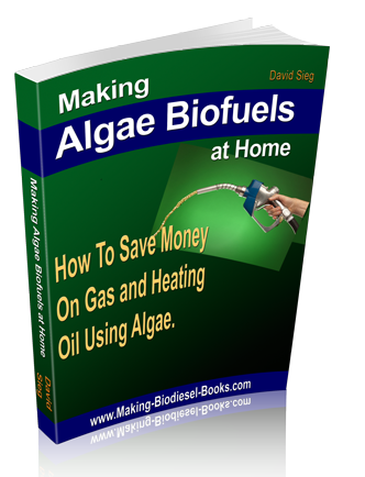 make algae biofuels at home