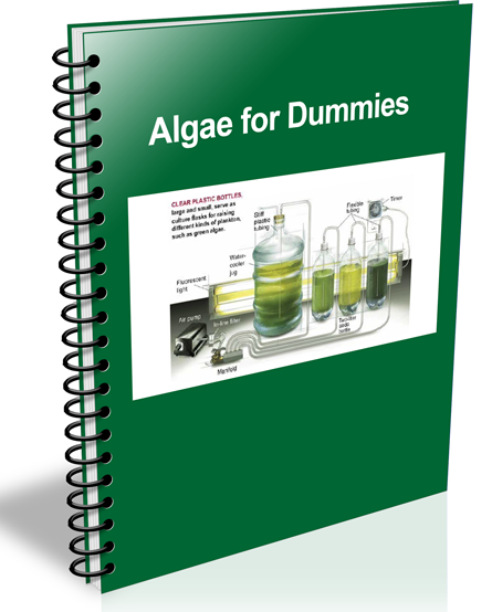 algae for dummies