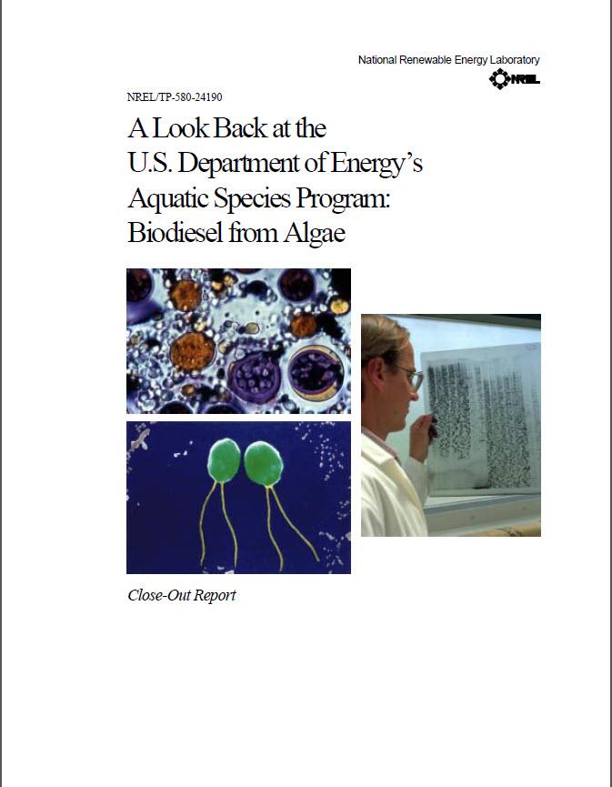 ASP Report