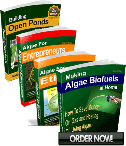algae biofuels training course