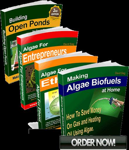 algae biofuels training course