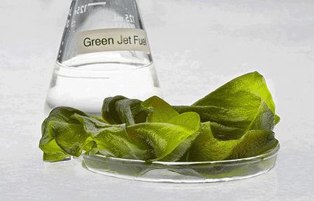green jet fuel