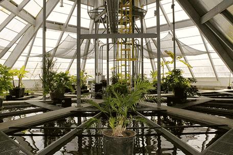 greenpowerhouse