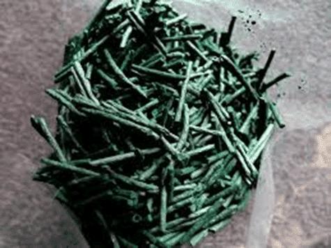 micro algae supplements